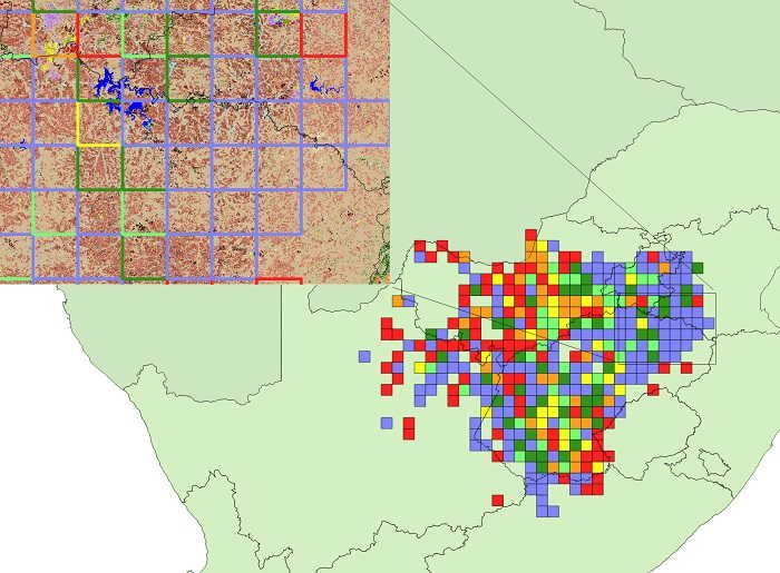 Figure 24. Range-change map between SABAP1 and SABAP2 for the Orange River francolin downloaded 19 May 2017. Red, orange and yellow represent quarter-degree grid cells with very large, large, and small relative decreases and blue, dark green and light green represent grid cells with very large, large and small relative increases. A count of the number of grid cells in each category is provided in Table 6. Only grid cells with at least four checklists in both SABAP1 and SABAP2 are shown. More detailed information on the interpretation of this range-change map is provided in Underhill & Brooks (2016b). Inset map shows underlying land cover classes (GeoTerra Image 2015) of an area where large (green-bordered cells) to very large (blue-bordered cells) increases in