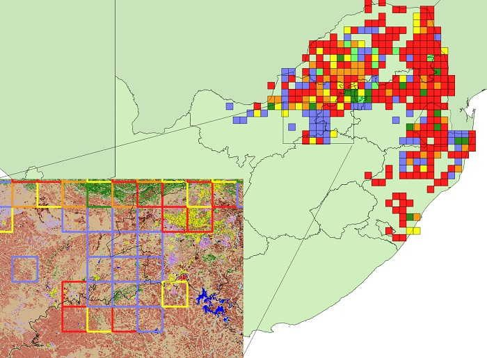 Figure 4. Range-change map between SABAP1 and SABAP2 for the Coqui francolin downloaded 19 May 2017. Red, orange and yellow represent quarter-degree grid cells with very large, large, and small relative decreases and blue, dark green and light green represent grid cells with very large, large and small relative increases. A count of the number of grid cells in each category is provided in Table 1. Only grid cells with at least four checklists in both SABAP1 and SABAP2 are shown. More detailed information on the interpretation of this range-change map is provided in Underhill & Brooks (2016b). Inset map shows underlying land cover classes (GeoTerra Image 2015) of an area where widespread and large (greenbordered cells) to very large (blue-bordered cells) increases in Coqui francolin occurred. Sandcoloured areas are grassland, coral-coloured areas are low intensity, cultivated commercial fields, green areas are woodland and yellow is depicted as urban areas. The bright blue at the right of the inset map is the Vaal Dam with the Vredefort Dome visible immediately to the West.