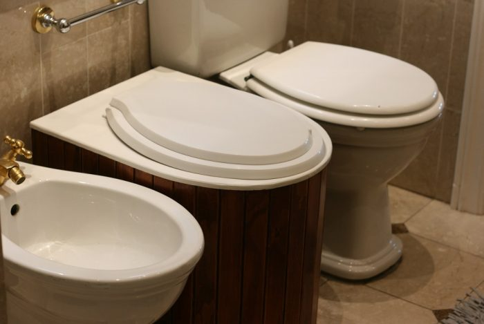 Eco-throne composting toilet