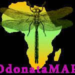 Dragonfly Atlas: Megan Loftie-Eaton, Sally Hofmeyr, Ryan Tippett & Les Underhill