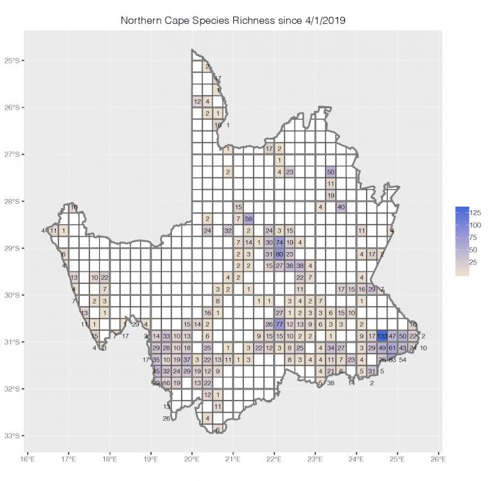 BirdPix species richness in past year in Northern Cape