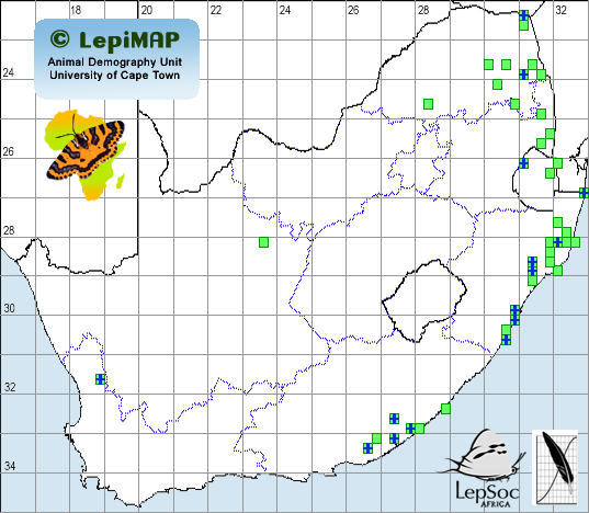 LepiMAP distribution map for Mozart moth Achaea lienardi
