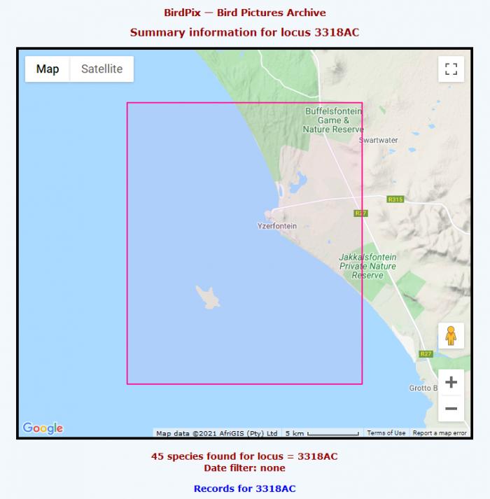 Yzerfontein QDGC 3318AC